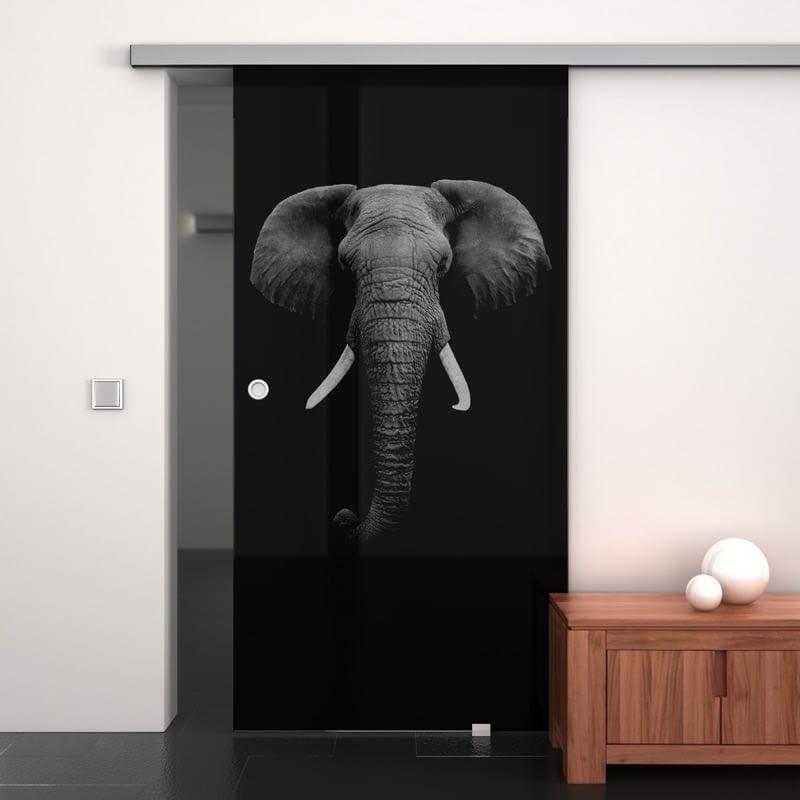 Glasschiebetür lackiert mit Lasermotiv Elefant